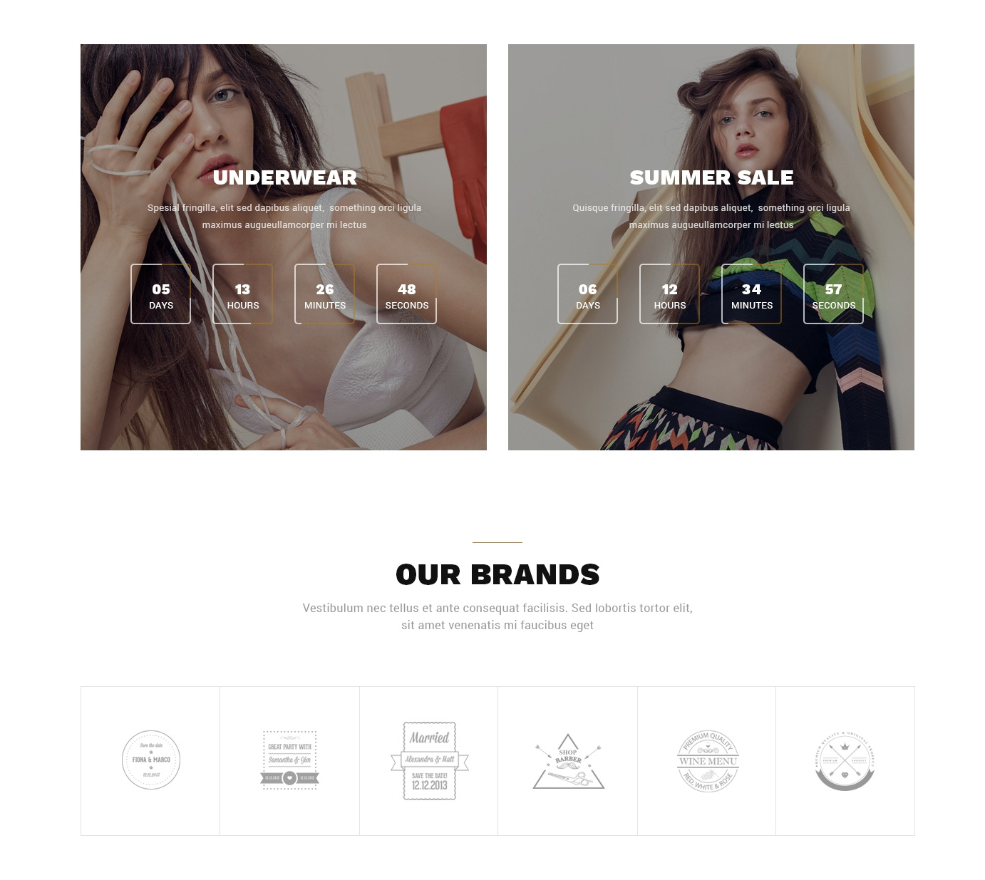 HTML Bootstrap Carousel Theme